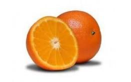 Orange de table Gamin