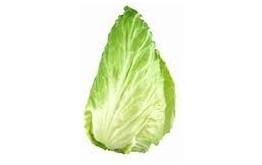 Salade Pain de Sucre