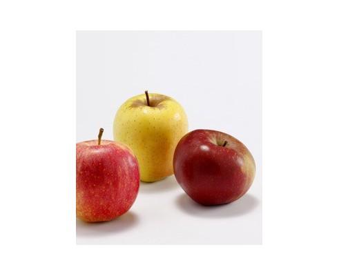 Pomme à croquer