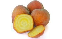 Betterave Orange