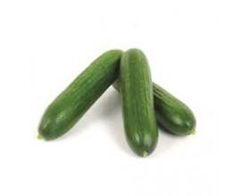 Mini concombre