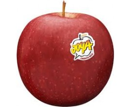 Pomme joya rouge