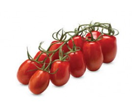 Tomate cerise San Marzano
